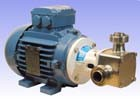 "1 1/2"" P200 'Pureflo' Hygienic Self-Priming Flexible Impeller Motor Pump Unit"